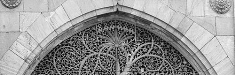 cropped-tree-of-life-in-ahmedabad-mosque-optimized-optimized-1